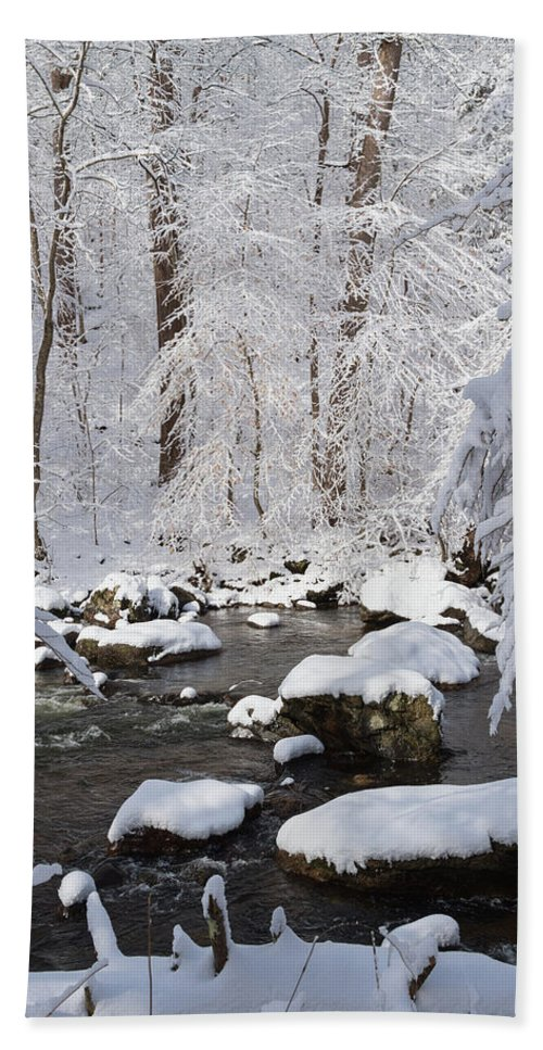 Snow Beach Towel featuring the photograph Snowy Day by Ken Curtis