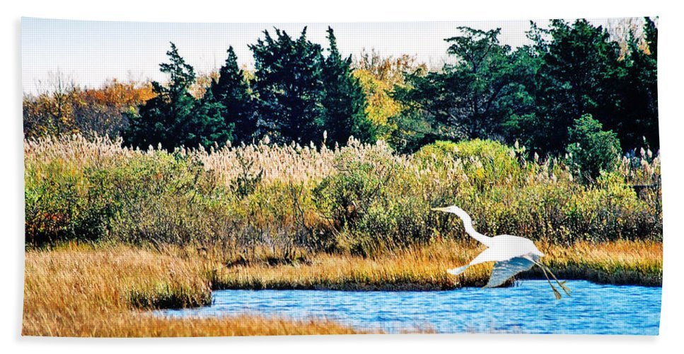 Landscape Beach Towel featuring the photograph Snowy Egret-island Beach State Park N.j. by Steve Karol