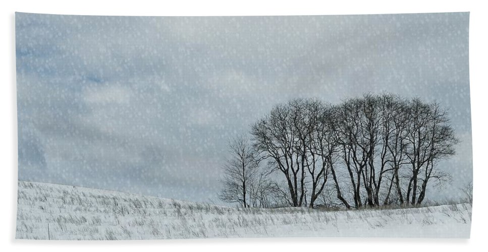 Snow Beach Sheet featuring the photograph Snowy Pasture by JAMART Photography
