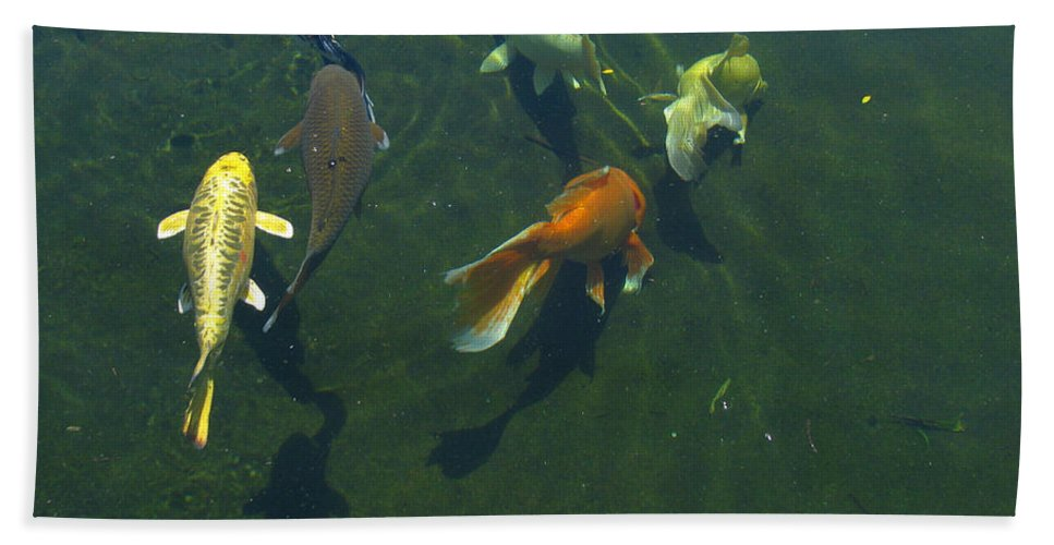 Patzer Beach Towel featuring the photograph So Koi by Greg Patzer