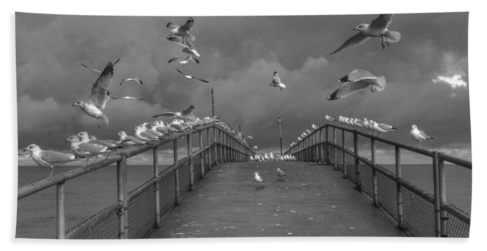 Seagulls Beach Towel featuring the photograph So Many Gulls by Jeff Paul