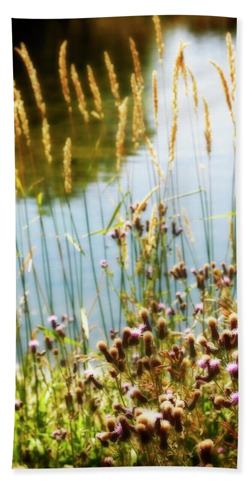 Soft Beach Towel featuring the photograph Soft And Surreal by Marilyn Hunt