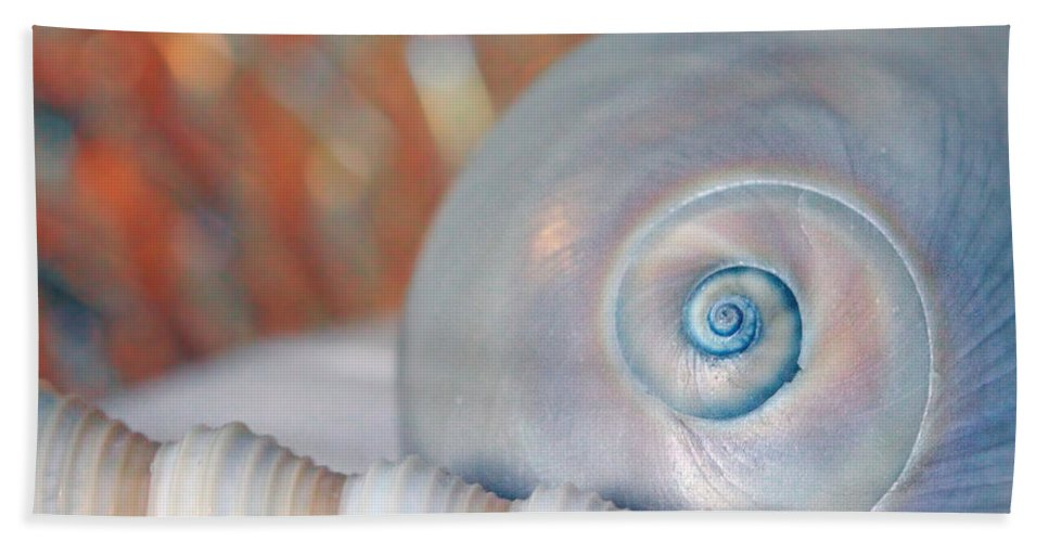 Seashell Beach Towel featuring the photograph Soft Colored Shells by Angela Murdocks