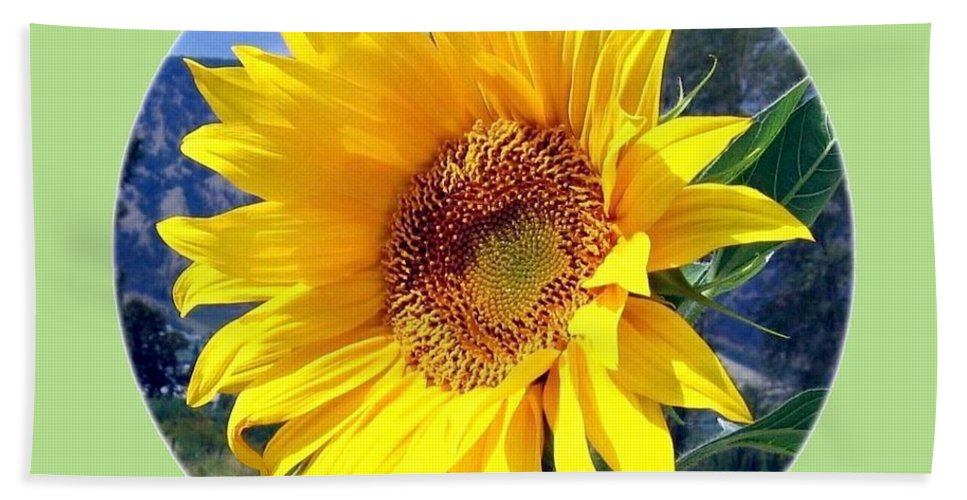 Sunflower Beach Towel featuring the photograph Solid Sunshine by Will Borden