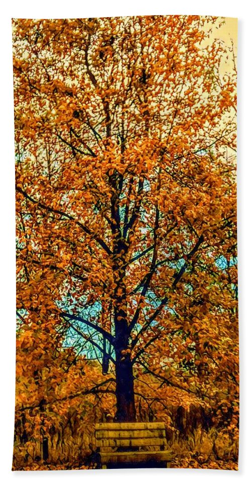 Beach Towel featuring the photograph Solitary Fall by Lorie Kash