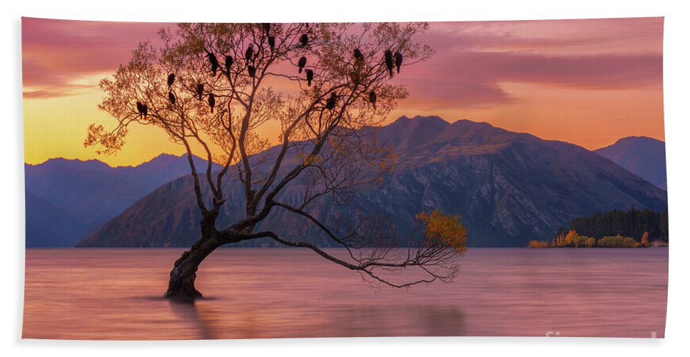 Tree Beach Towel featuring the photograph Solitary Willow Tree by Kamrul Arifin Mansor