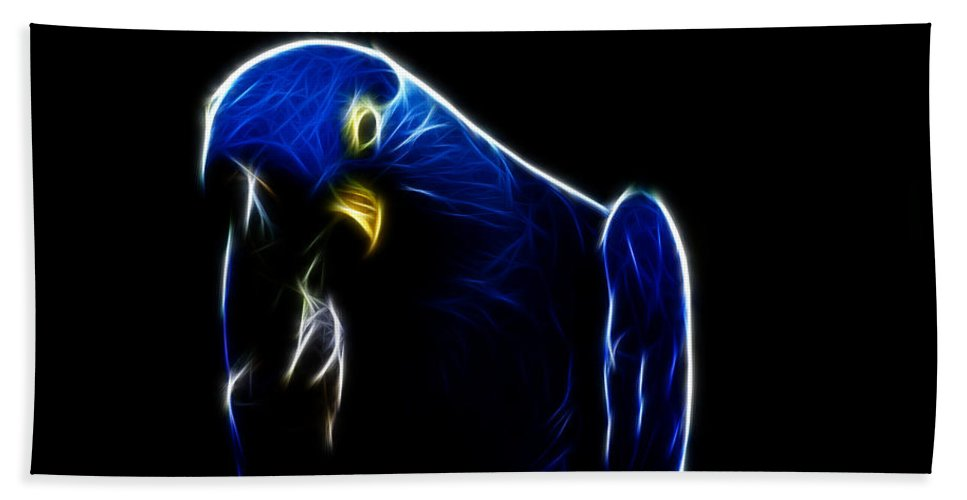 Blue Macaw Beach Towel featuring the photograph Somewhat Blue by Douglas Barnard