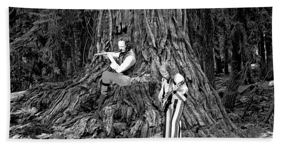 Jethro Tull Beach Towel featuring the photograph Songs In The Woods by Ben Upham