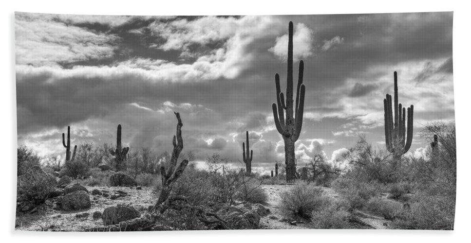 Sonoran desert beach sheet featuring the photograph sonoran desert in black and white by saija lehtonen