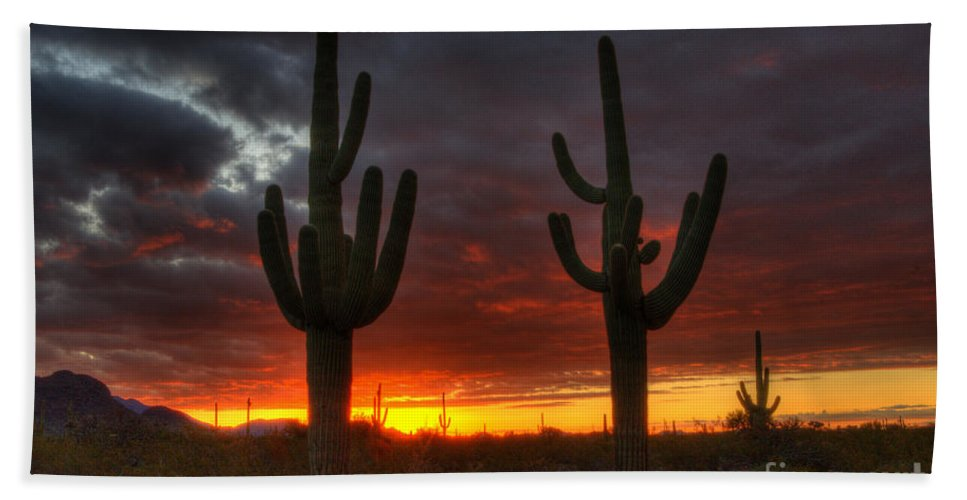 Sunrise Beach Towel featuring the photograph Sonoran Desert Sunrise 1 by Bob Christopher