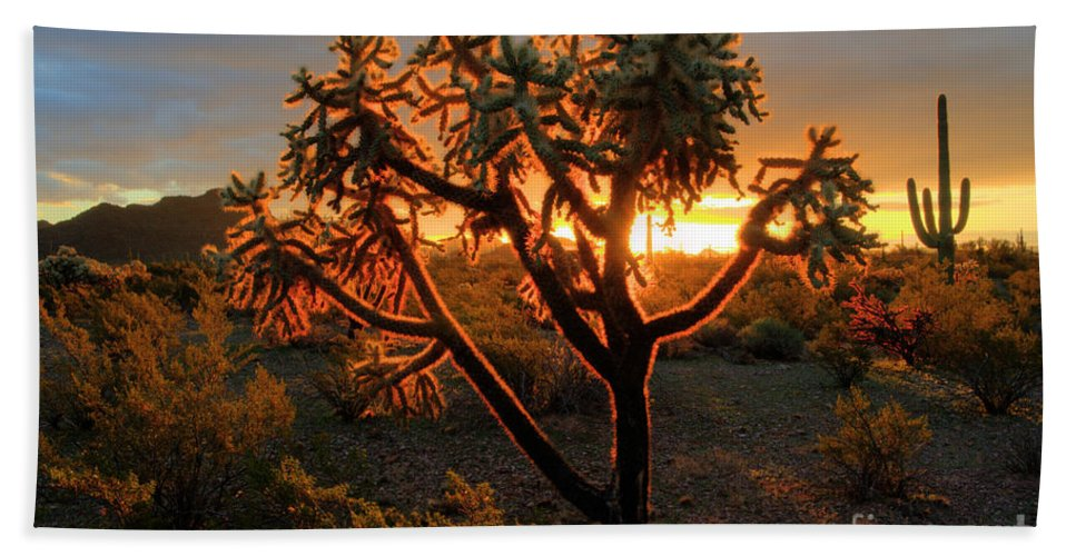 Sunrise Beach Towel featuring the photograph Sonoran Desert Sunrise 2 by Bob Christopher