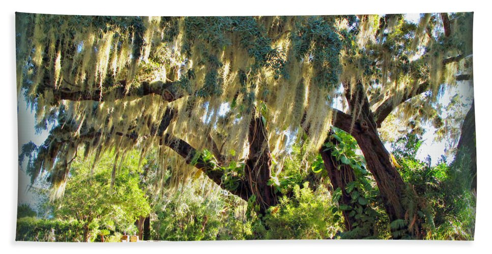 Orlando Beach Towel featuring the photograph Southern Pathway by Joan Minchak