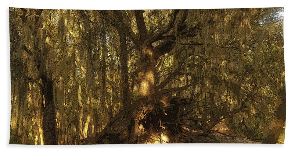 Art Beach Towel featuring the painting Spanish Moss by David Lee Thompson