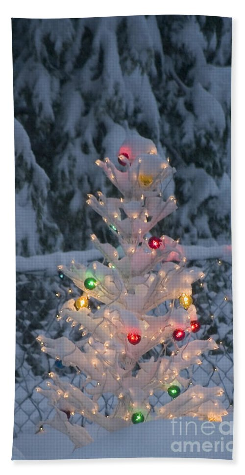 Christmas Beach Towel featuring the photograph Sparkly Tree by Jim And Emily Bush