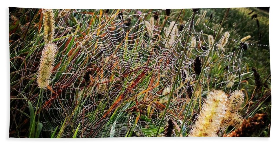 Spider Beach Towel featuring the photograph Spiderweb by Angela Rath