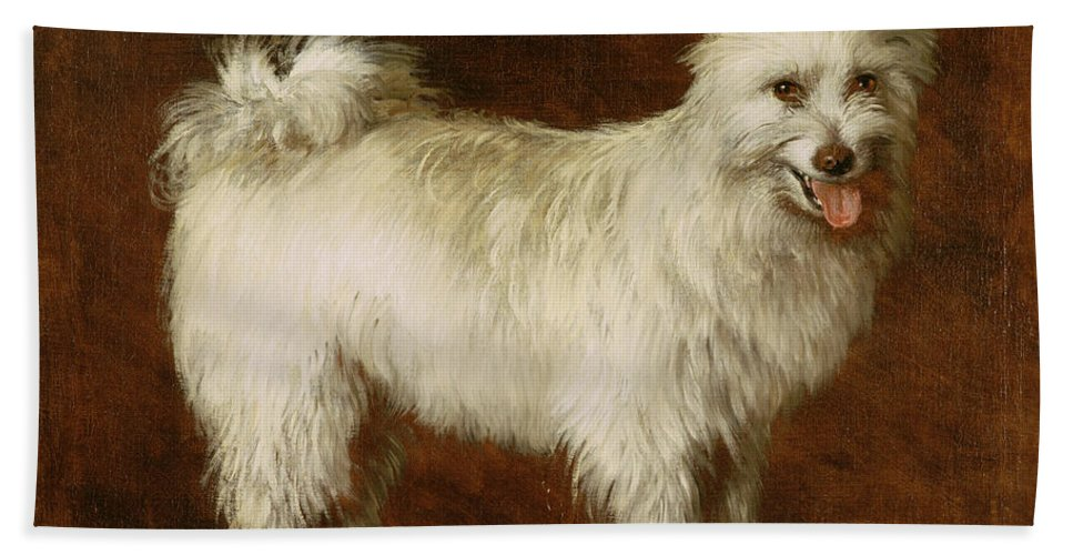 Spitz Beach Towel featuring the painting Spitz Dog by Thomas Gainsborough