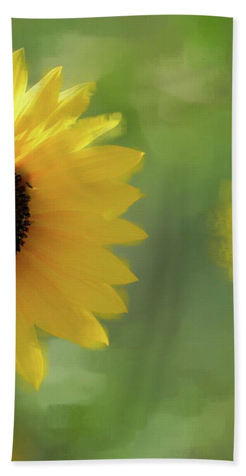 Sunflower Beach Towel featuring the photograph Splash Of Yellow by Betty LaRue