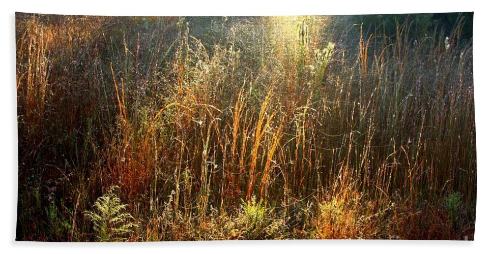 Marsh Beach Towel featuring the photograph Spotlight On The Marsh by Carol Groenen