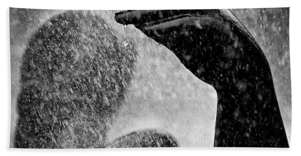 Fountain Beach Towel featuring the photograph Spray by Dave Bowman