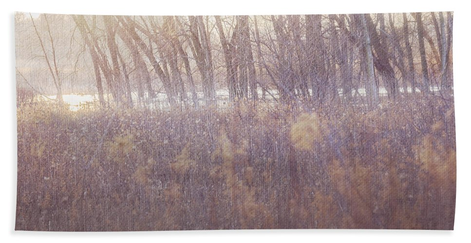 Spring Beach Towel featuring the digital art Spring Frost by Will Jacoby Artwork