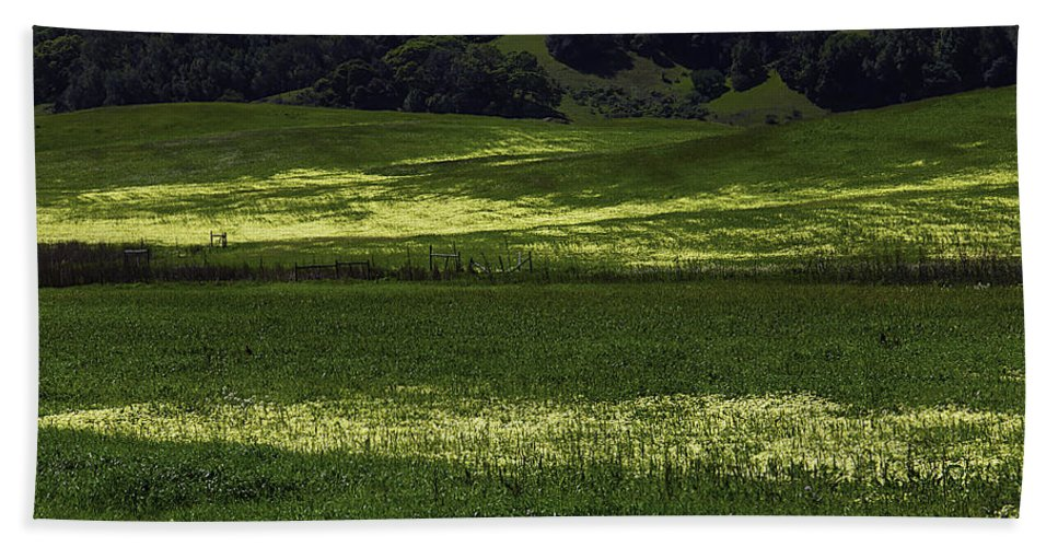 Green Beach Towel featuring the photograph Spring Meadows Of Wildflowers by Garry Gay