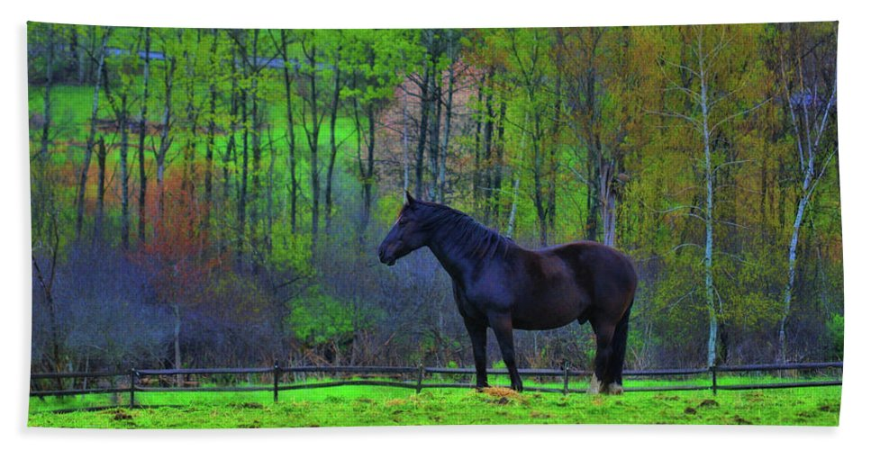 Horse Beach Sheet featuring the photograph Spring Pasture by JAMART Photography