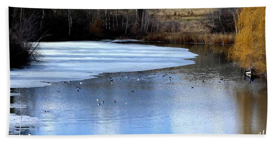 Pond Beach Towel featuring the photograph Spring Pond by Will Borden