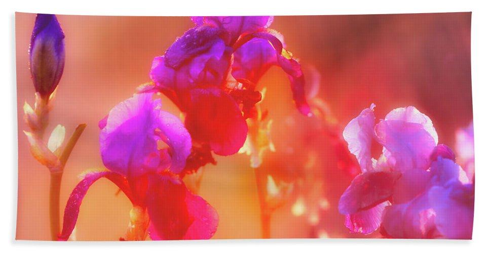 Beauty Beach Towel featuring the photograph Spring Rain by Leland D Howard