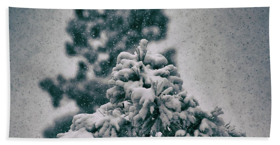 Nature Beach Towel featuring the photograph Spring Snowstorm On The Treetops by Jason Coward