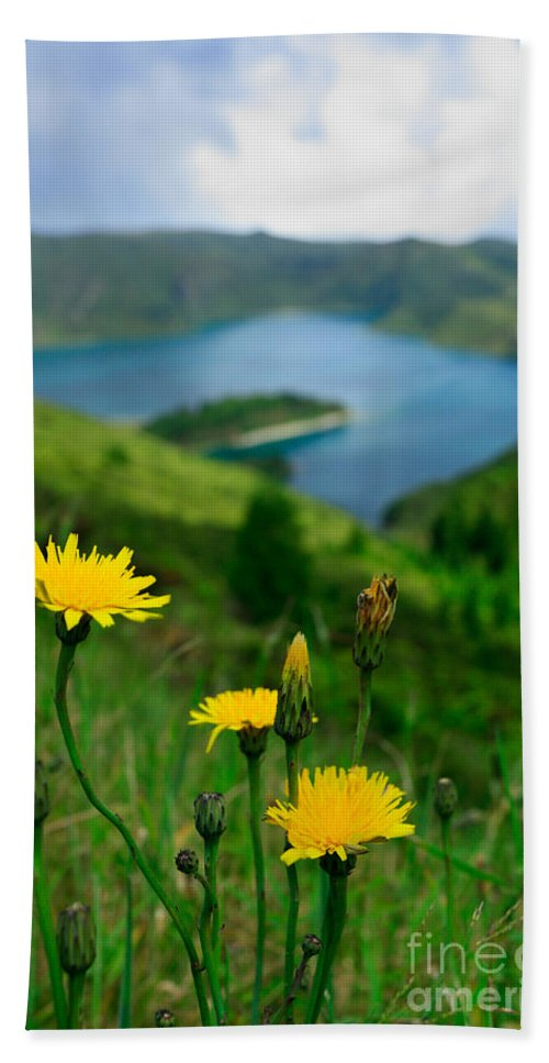 Caldera Beach Towel featuring the photograph Springtime In Fogo Crater by Gaspar Avila