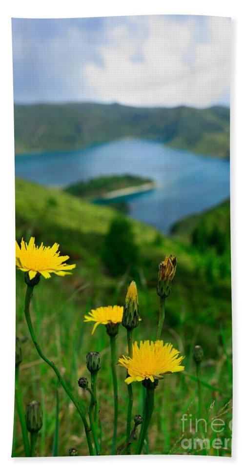 Caldera Beach Sheet featuring the photograph Springtime In Fogo Crater by Gaspar Avila