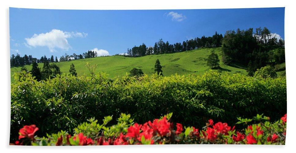 Countryside Beach Towel featuring the photograph Springtime Landscape by Gaspar Avila