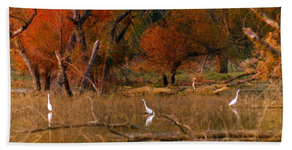 Landscape Beach Towel featuring the photograph Squaw Creek Egrets by Steve Karol