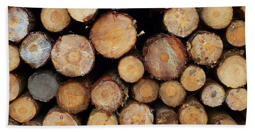 Logs.trees.woodpile.timber Beach Towel featuring the photograph Stacked Timber Two by Gordon James