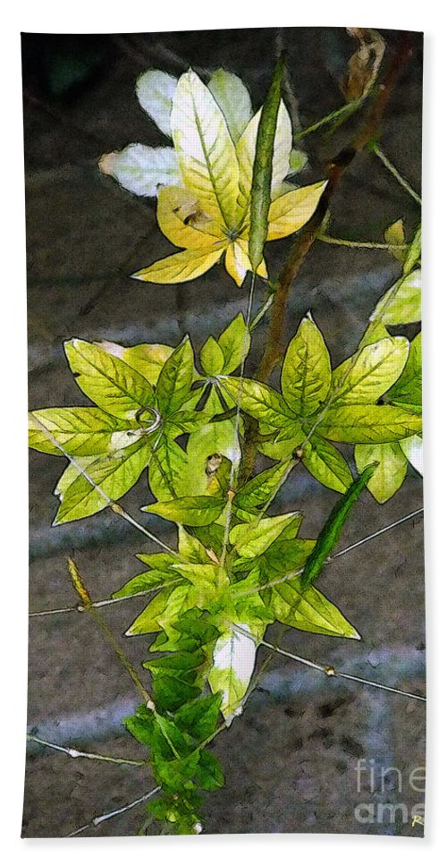 Autumn Beach Towel featuring the painting Stalk With Seed Pods by RC DeWinter