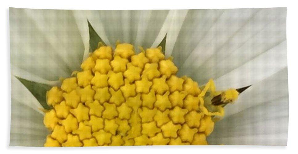 Flower Beach Towel featuring the photograph Starry Center by Vonda Drees
