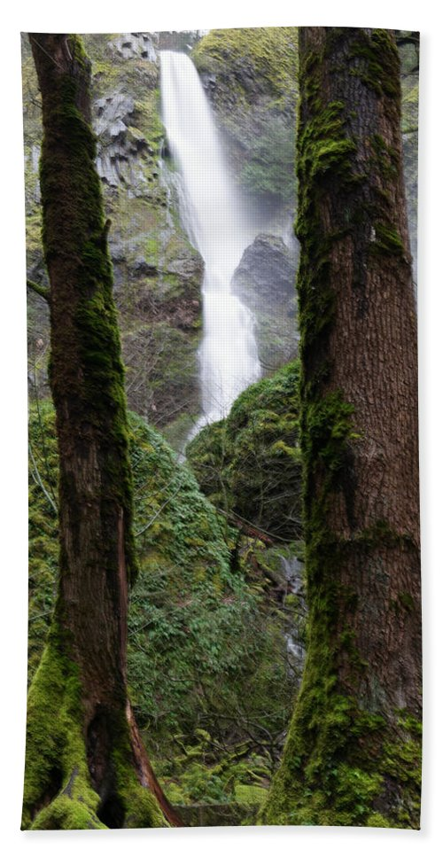 Waterfall Beach Towel featuring the photograph Starvation Creek Falls Between The Trees by Jeff Swan