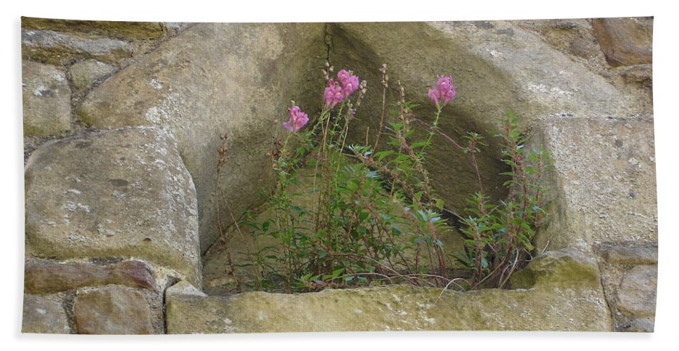 Flowr Beach Towel featuring the photograph Stone Wall Determination by Susan Baker