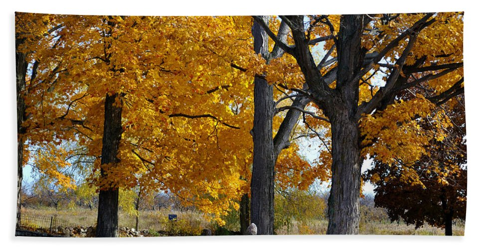 Stone Wall Beach Towel featuring the photograph Stone Wall by Tim Nyberg
