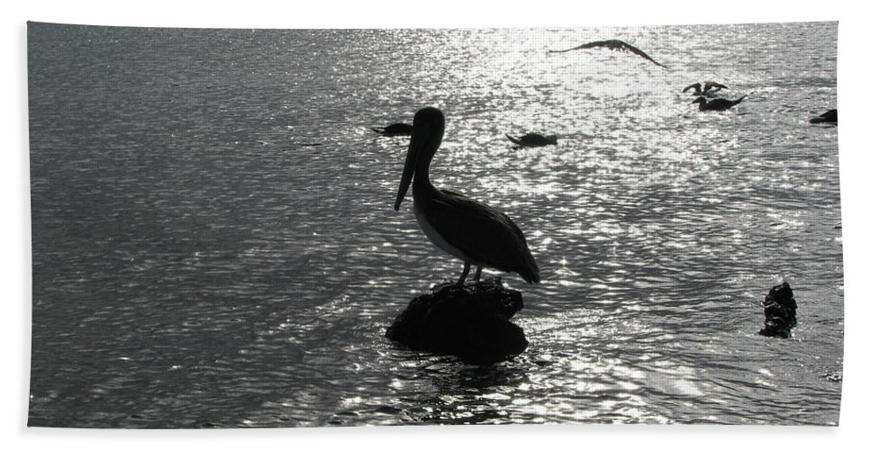 Sea Beach Towel featuring the photograph Stork At Evening by Sandra Bourret