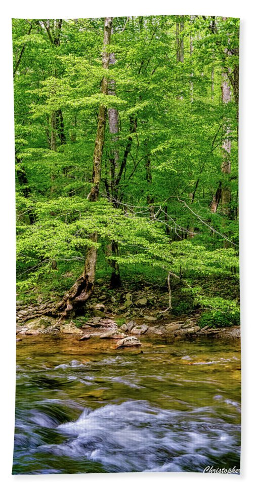 Nature Beach Towel featuring the photograph Stream Side by Christopher Holmes