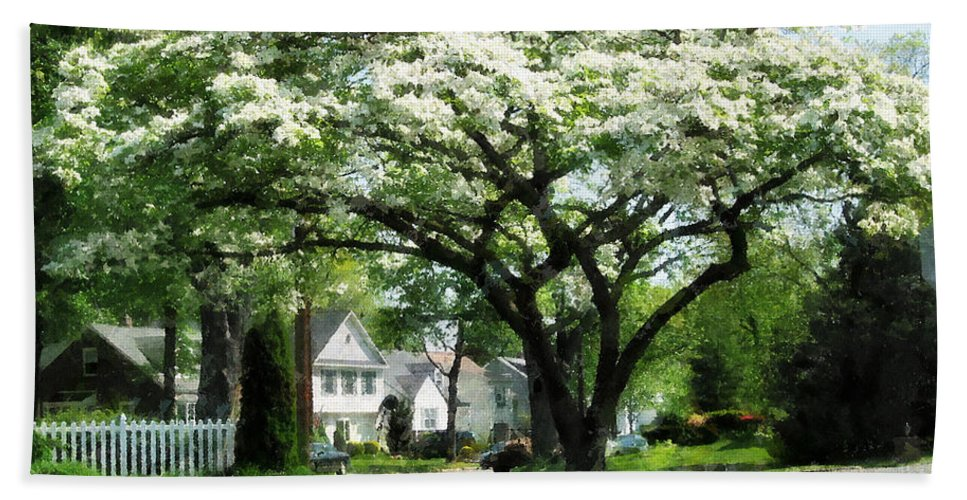 Spring Beach Towel featuring the photograph Street With Dogwood by Susan Savad