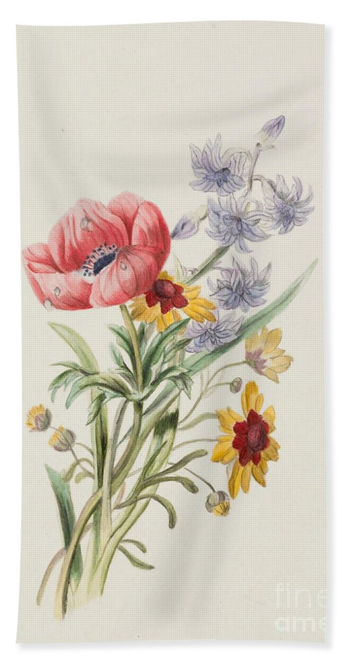 Study Of Wild Flowers Beach Towel featuring the painting Study Of Wild Flowers by English School