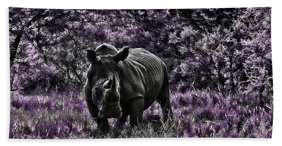Rhino Beach Towel featuring the photograph Styled Environment-the Modern Trendy Rhino by Douglas Barnard