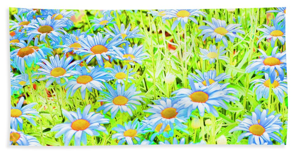 Daisies Beach Towel featuring the photograph Summer Blues by Traci Cottingham