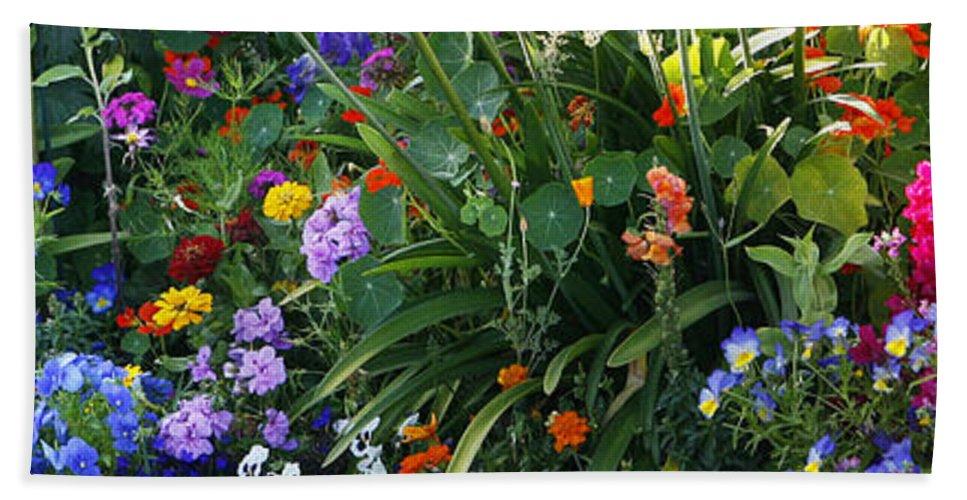Summer Beach Towel featuring the photograph Summer Garden 2 by Marilyn Hunt