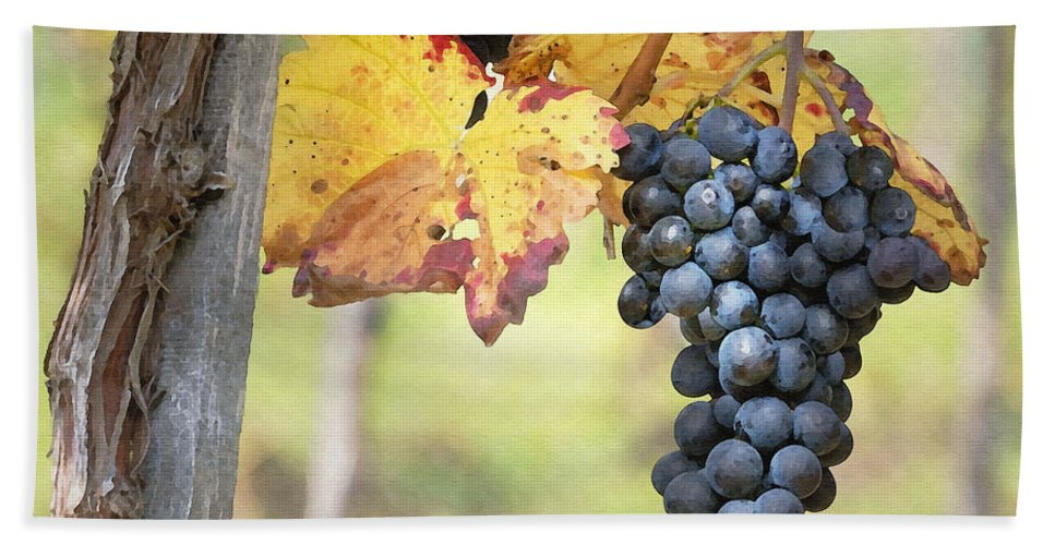 Grapes Beach Towel featuring the digital art Summer Grapes by Sharon Foster