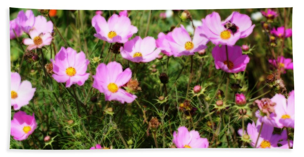 Flower Beach Towel featuring the photograph Summer Pink by Smilin Eyes Treasures