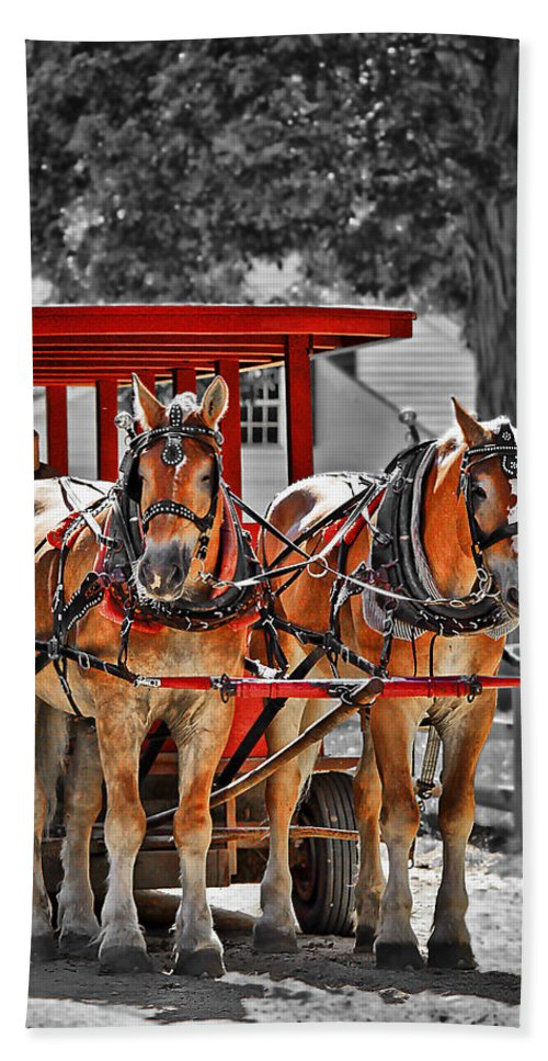 Carriage Beach Towel featuring the photograph Summer Ride by Evelina Kremsdorf