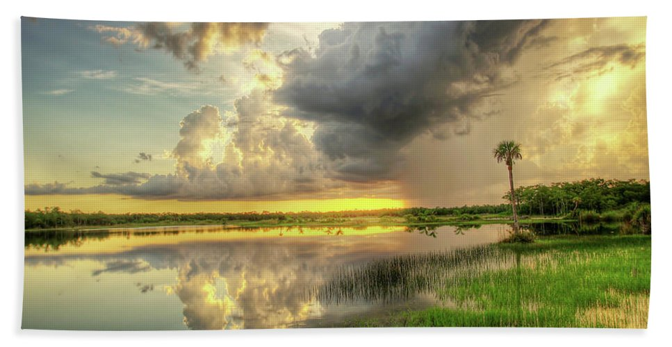 Landscapes Beach Towel featuring the photograph Summer Storm by Dennis Goodman